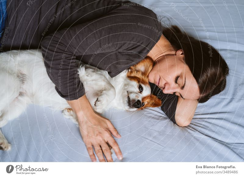 young woman and dog at home resting on bed. Love, togetherness and pets indoors sleep sleeping love daytime caucasian jack russell stay home stay safe