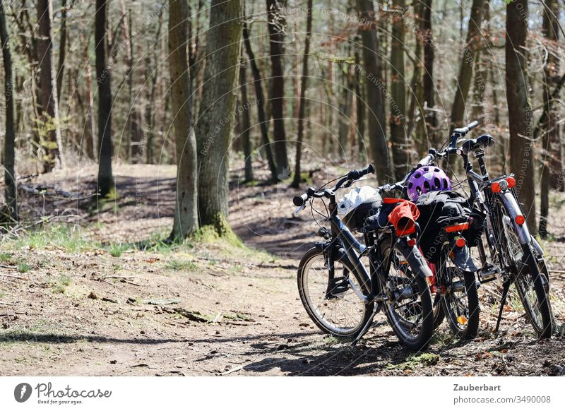 Bicycles of a family on a bicycle tour on a forest path Wheel bike tour Forest Bike helmet Kiddy bike Cycling Cycling tour Sun Family children