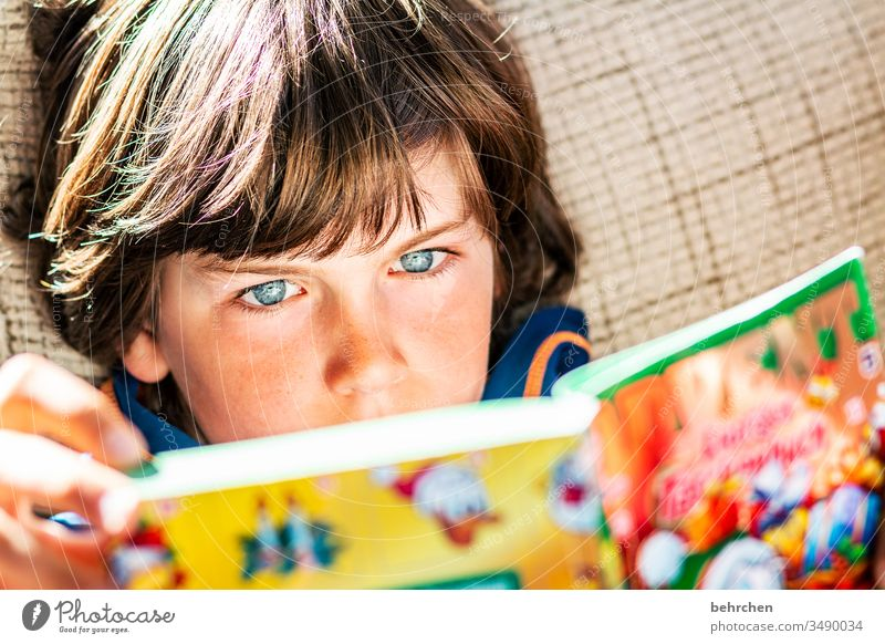 printed product | colourful pictures concentrated Child hollowed Infancy Boy (child) Colour photo Reading Book Study Education Parenting Literature Concentrate