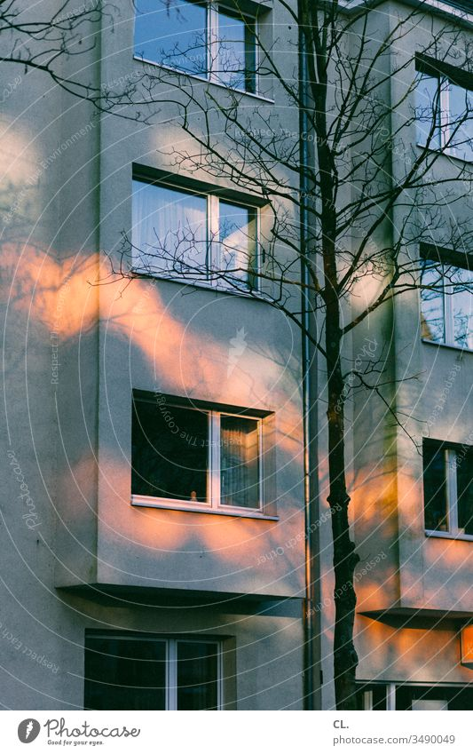 enlightenment House (Residential Structure) Window Apartment Building tree Light Light (Natural Phenomenon) Visual spectacle open window Facade Apartment house