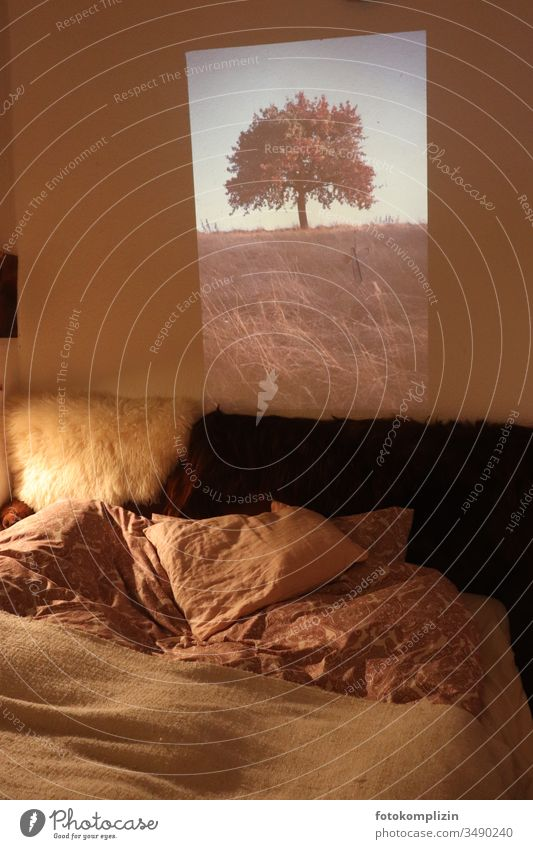 Slide projection in the room_ inside and outside slide projection Projection Projection screen Tree on the outside two worlds Bed at home Dream world outlook