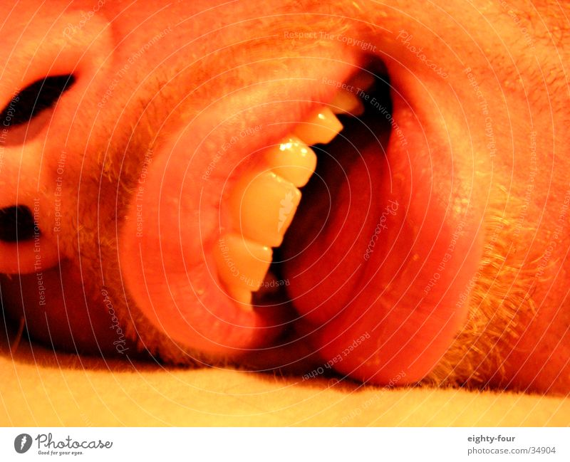 visage Slaver Death Toothpaste Man Tongue Face Laughter Contentment unburdened eighty-four Teeth