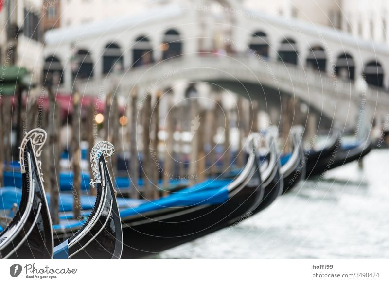 A series of gondolas on the Canale Grande with the Rialto Bridge in the background Gondolier gondolieri Venice Italy Gondola (Boat) Canal Grande Channel