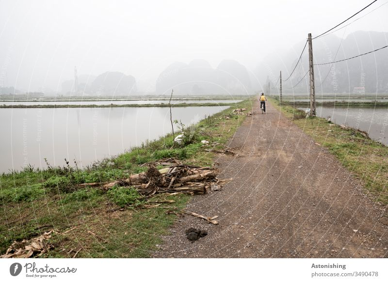 Cyclist in the fog in Ninh Binh, Vietnam Nin Binh Asia Wheel Cycling off path Culture Vacation & Travel Asian Rice rice fields Paddy field Damp Wet Water Wood