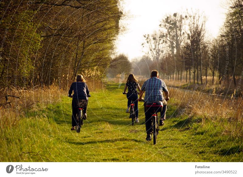 Sunday outing - or a father taking his teenage daughters on a bicycle tour through the Drömling nature reserve. Cycling tour Bicycle Exterior shot Day