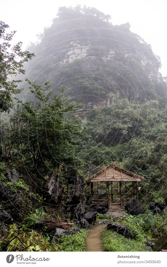 Hut in the jungle near Ninh Binh, Vietnam Bich Dong Pagoda jungles leaves foliage Tree Roof Behind Virgin forest Asia Nin Binh path off Fog Damp Hill Mountain
