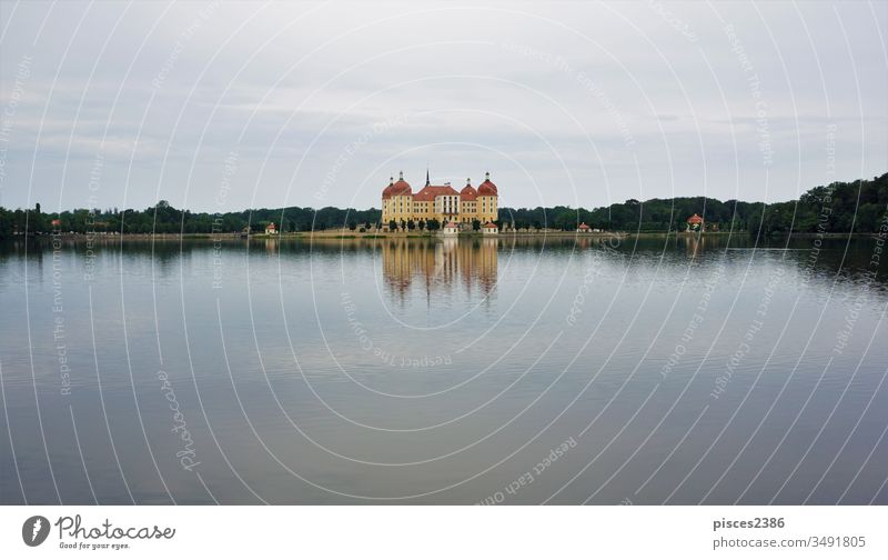 Moritzburg castle reflecting in the castle lake baroque german germany saxony architecture building dresden moritzburg moritzburg castle age reflective