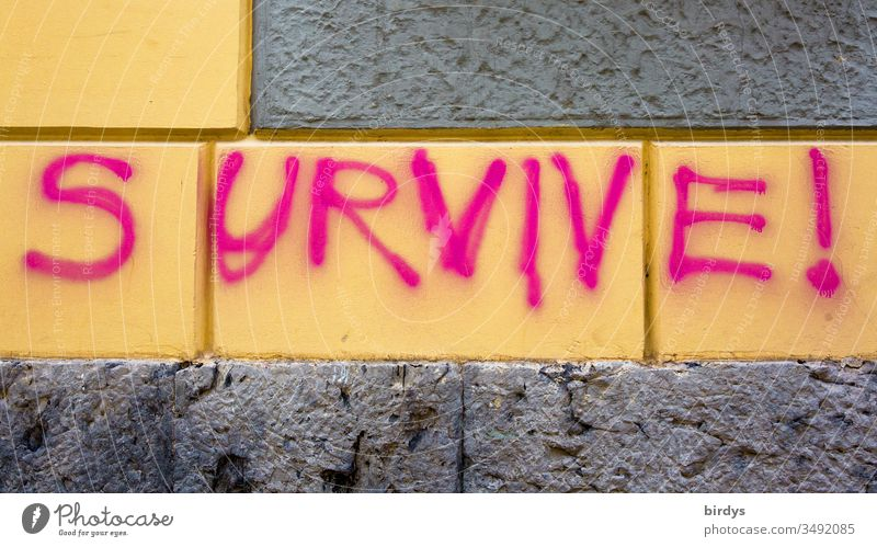 survive !, survive !, sprayed, lettering in English on a house wall in close-up format Survive invitation Brave Poverty Climate change Deserted