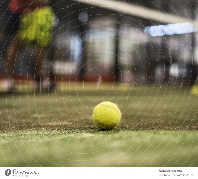 paddle tennis ball in court. Defocused man in background training padel sport class indoors net racket paddle-tennis game nobody player practice sports people