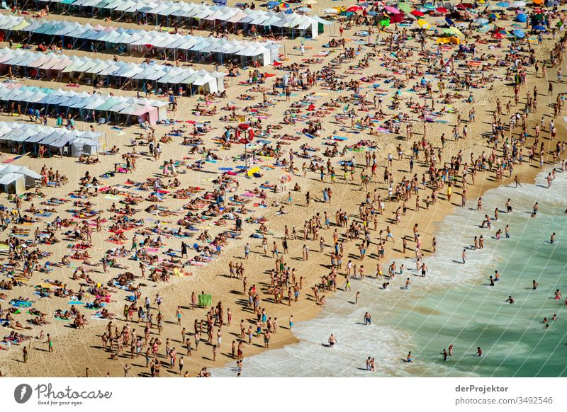 Crowded beach in Nazaré Brown Green aqueous Leisure and hobbies Multicoloured Exterior shot Tourism Sand Tracks Water Sunlight Environment Self-confident