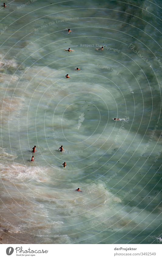 Swimming in the waves of Nazaré in Portugal Surf Waves Ocean Swimming & Bathing knee-deep Water on the coast water loving Aquatics Bathing place Human being