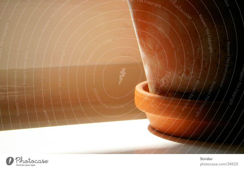 Sun Calm Window Orange Living or residing Pot Afternoon Flowerpot Window board Houseplant Clay pot