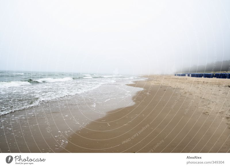 Holidays in the fog Vacation & Travel Tourism Trip Far-off places Beach Ocean Island Waves Baltic Sea Fog Coast Beach dune Sand Authentic Cold Wet Natural Blue