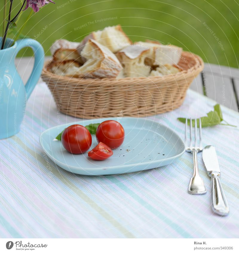 LeanFood II Vegetable Bread Tomato Nutrition Vegetarian diet Plate Knives Fork Flower Garden Meadow Vase Healthy Bright Delicious Blue Red Colour photo