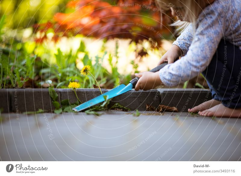Child doing the gardening girl Garden Gardening Weed outdoing outdo sb. garden tool weeding Diligent Help upbringing Parenting Cute Lovely Copy Space bottom