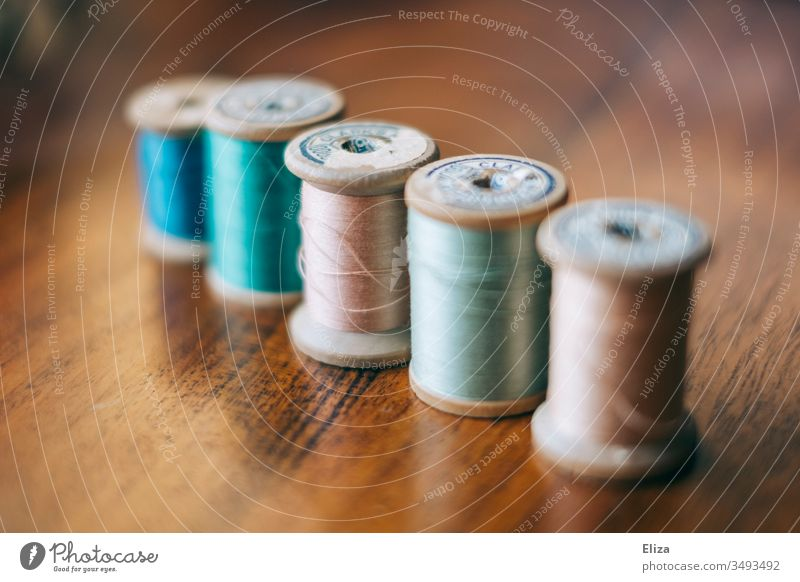 Five old sewing thread thread rolls in pastel colours on wood Thread rolls Sewing thread Old vintage pastel shades Handcrafts Leisure and hobbies Craft (trade)