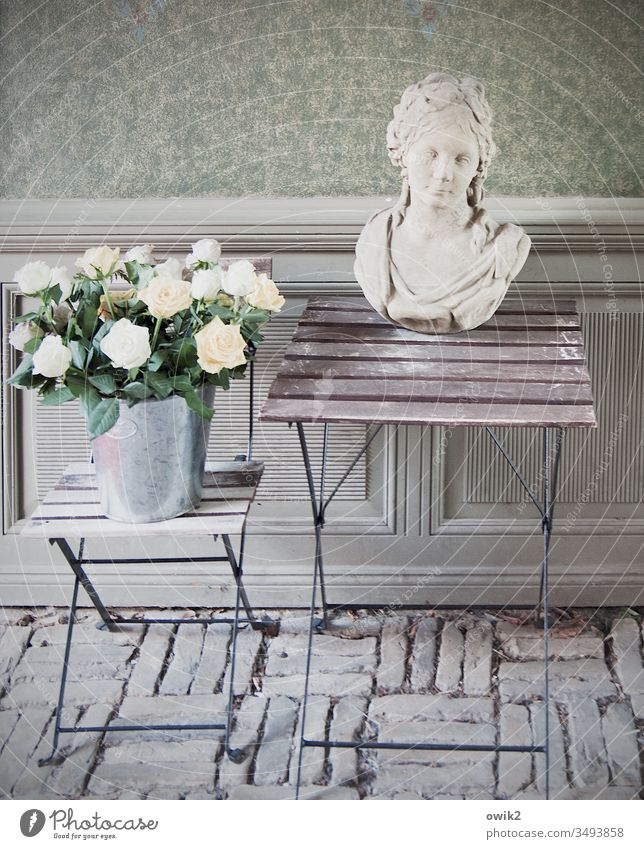 White Roses Passage Wall (building) Cobblestones Folding table Stool Simple Old Flowerpot Bucket roses Torso Sculpture Woman Baroque Face still life Deserted