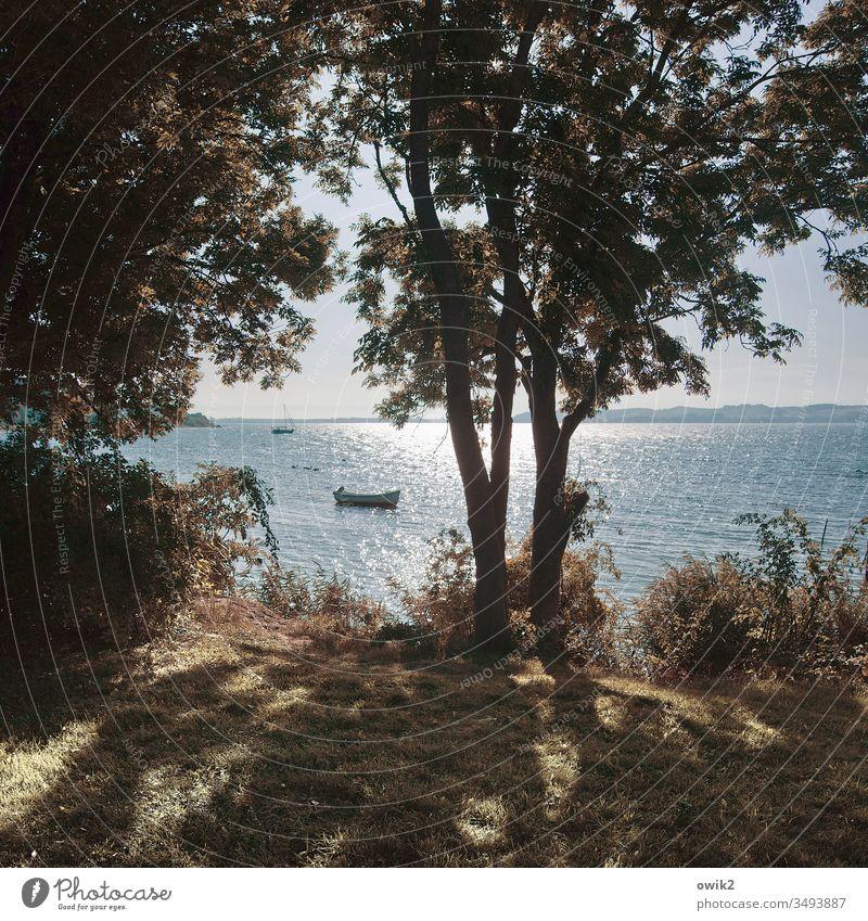 off-season Landscape Baltic Sea Rügen island rebuke Water Sunlight Reflection trees Silhouette boat Waves coast Island Vacation & Travel Deserted