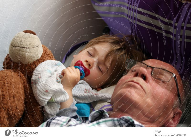 Grandpa, grandson and the teddy bear take a nap together Senior citizen grandpa Man Child Toddler Grandchildren Teddy bear midday nap Sleep Rest in common