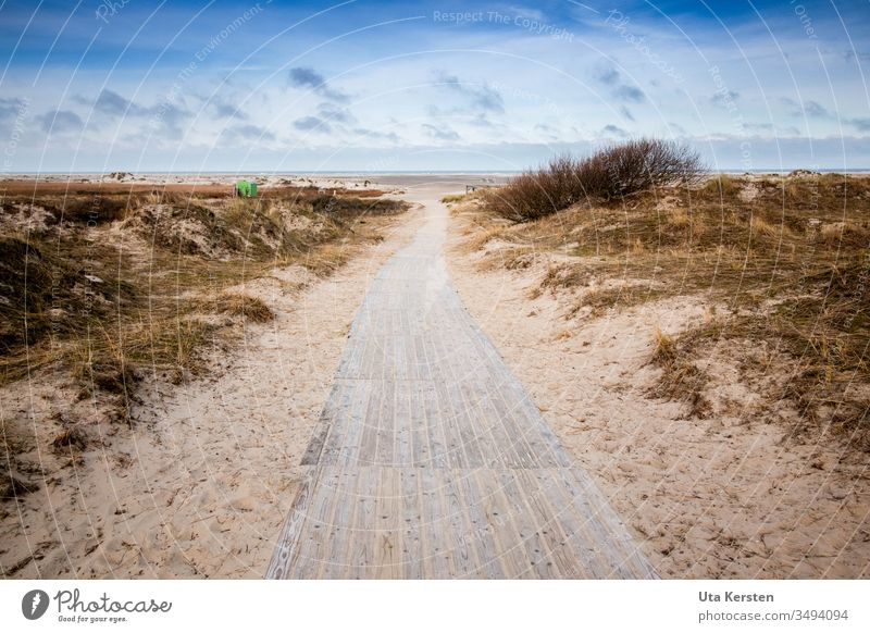 Way to the beach on Borkum Lanes & trails Beach Beach dune North Sea Island Ocean Coast Vacation & Travel Sand Sky Nature Deserted Clouds Exterior shot