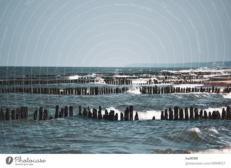Waves with groynes at the Baltic Sea Baltic coast swell Swell White crest eventful sea Beach Coast Ocean Water Gale Stage Mecklenburg-Western Pomerania wood