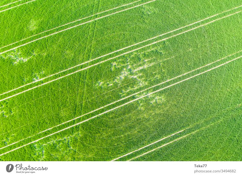 an agricultural field from above agricultural way tractor tractor path field background meadow background air aerial view aerial photo texture grass farm