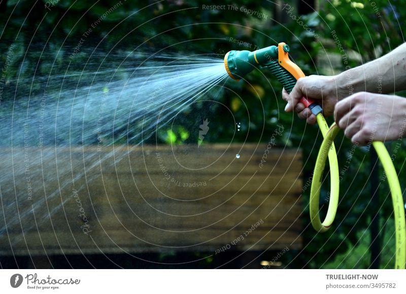 Two strong hands in front of a brown and dark green background hold a yellow garden hose with a green-orange coloured shower head from which a light shower jet of fresh water comes out, while some small drops fall down vertically