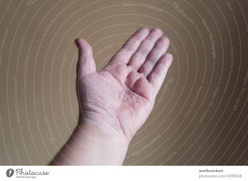 open hand by hand Palm of the hand Open helping helping hand Empty Indicate gesture body part Manly left hand Gesture Human being shallow depth of field Anatomy