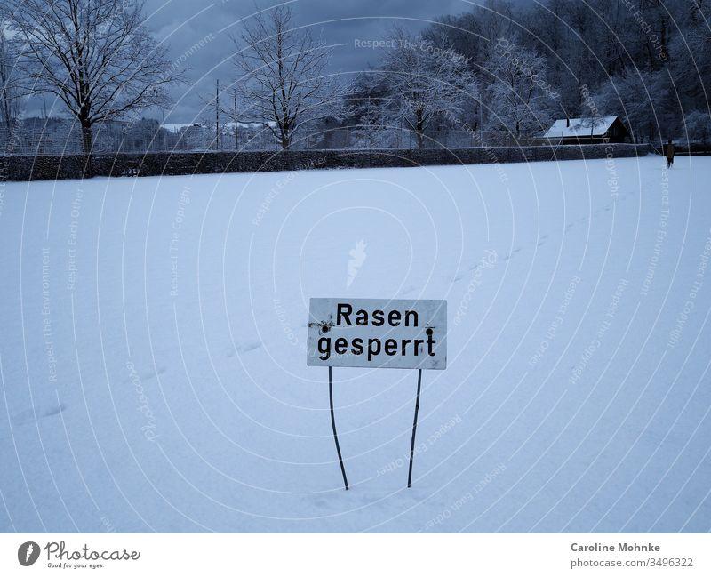 """Schild """"Rasen gesperrt"""" auf schneebedecktem Rasen Hinweisschild Tag Schnee schneebedeckter Rasen Schilder und Schriftzüge Schrifttafel Winter Schneespuren Spur"""