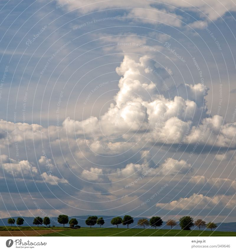 cheerful to cloudy Agriculture Forestry Environment Nature Landscape Plant Earth Sky Clouds Storm clouds Horizon Summer Climate Climate change Weather