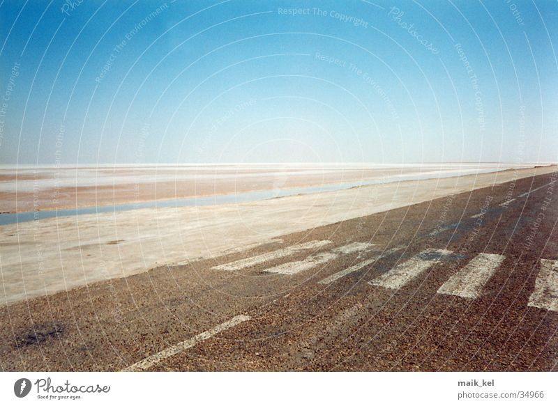 Chott El Djerid (salt lake) Salt  lake Dry Tunisia Badlands Transport Street Desert