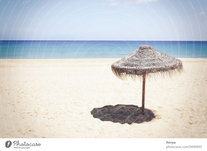 Lonely beach with parasol Beach Sand Sandy beach Sun vacation Ocean Horizon Sunshade Sky Vacation & Travel Coast Summer Relaxation Water Deserted Exterior shot