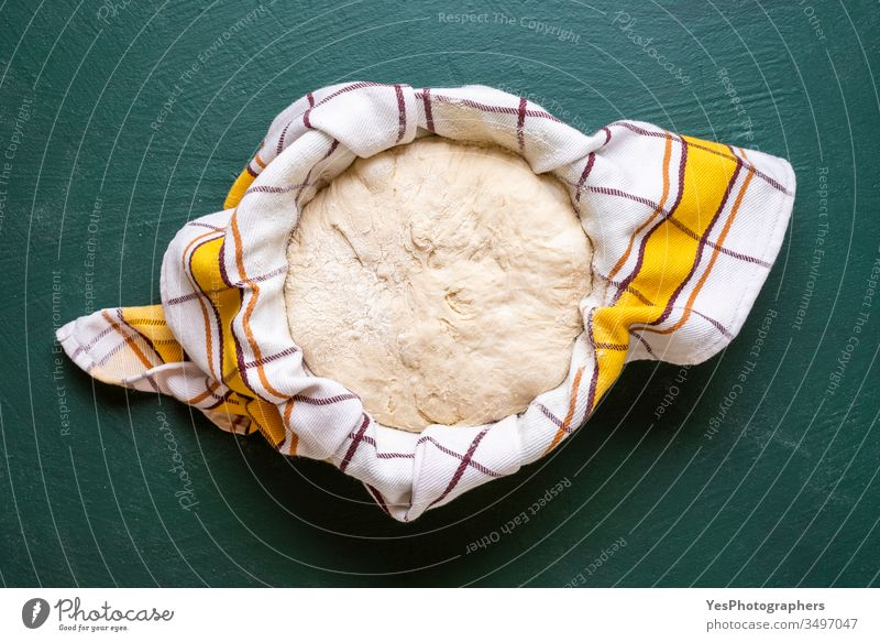 Sourdough set to rise in a bowl, top view artisan bread bake baker bakery baking at home baking bread batter close-up covered cuisine culture delicious diet