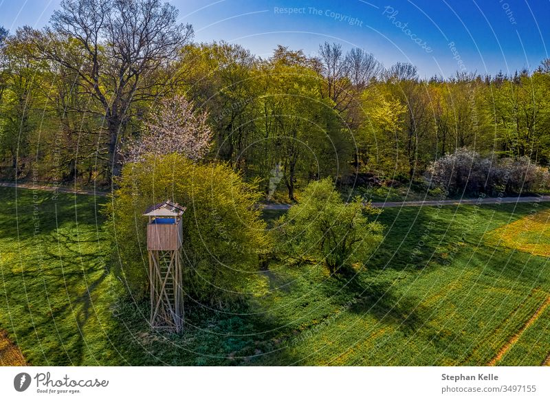 A high stand in the green, aerial panorama from a field with a forest in the background high level Spring Field Nature Exterior shot Colour photo