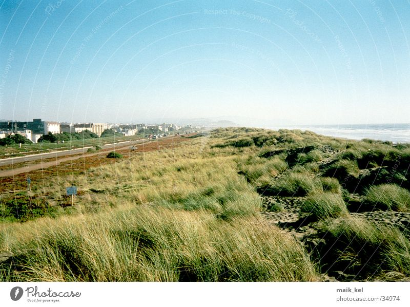 Ocean Green Grass Landscape Wind San Francisco