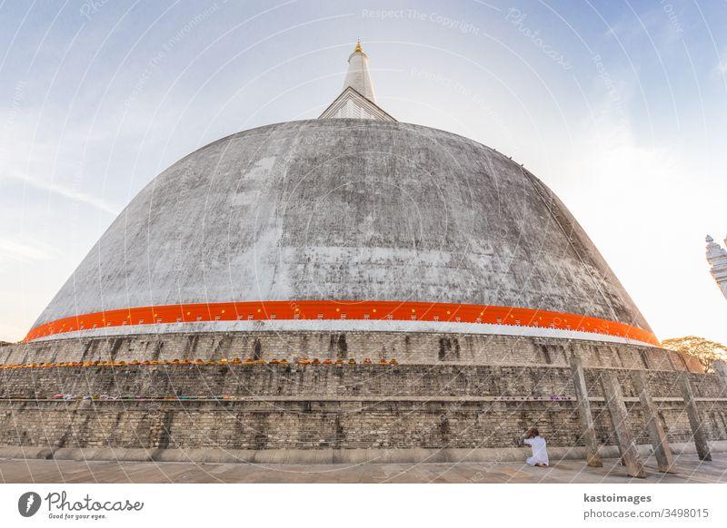 Solitary buddhist praying at Ruwanwelisaya stupa, in Anuradhapura historical park, Sri Lanka. anuradhapura worship white travel traditional temple sky sacred
