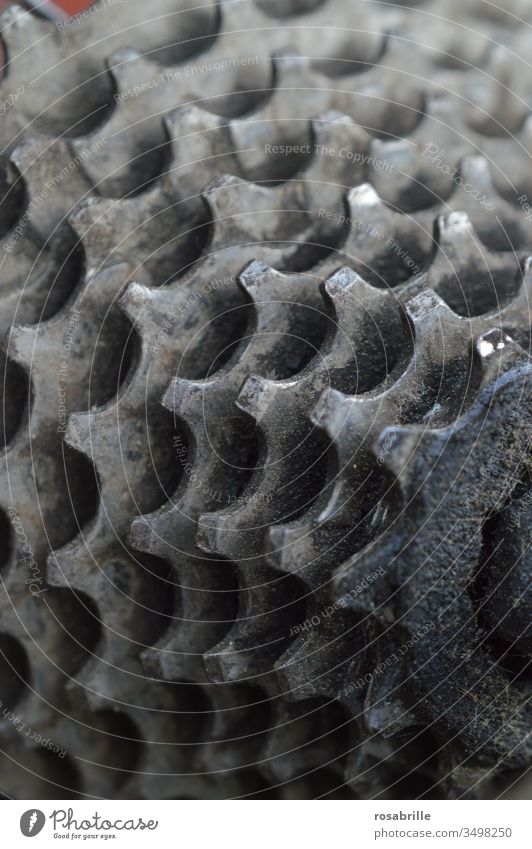 Detail of the bicycle gearshift | Symmetry pinion chain circuit Gear rim Gearwheel Bicycle Circuitry Teeth Near Second-hand utilised Oily grease Wheel Sports