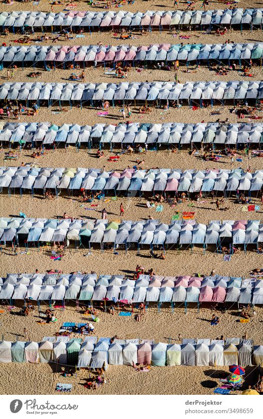 Clear lines, but too little distance on the beach of Nazaré seashore Landscape Crowd of people Vacation & Travel Willpower Aerial photograph Adventure