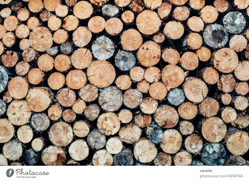 Stacked logs Wood Tree trunk tree trunks wooden farm Hunter Firewood campfire Exterior shot Deserted Stack of wood Brown Structures and shapes Fuel Supply
