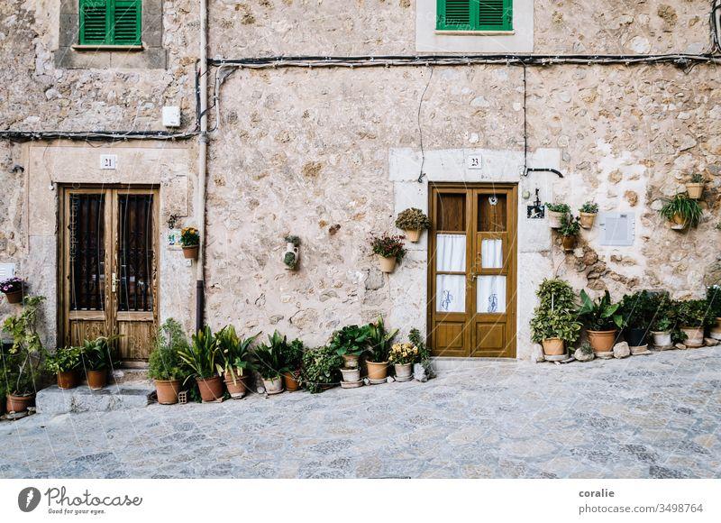 House entrance with plants in Mallorca Valldemossa Plant Flowerpot neighbourhood Side by side next door Door front door Entrance Majorca Alley Colour photo