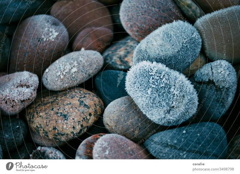 Frozen stones in winter iced Winter Flotsam and jetsam Ice Snow Frost Cold Crystal structure Ice crystal Frostwork Freeze Blue Hoar frost