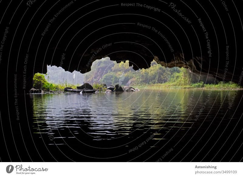Cave in Ninh Binh, Tam Coc, Vietnam grotto Asia River Dark Vantage point low Green Black Rock Stone Water River bank stones foliage leaves Forest Virgin forest