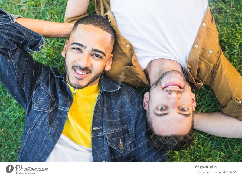 Gay couple laying down on the grass at the park. gay love relationship resting date lovely partnership positive relax freedom life young pride nature dating
