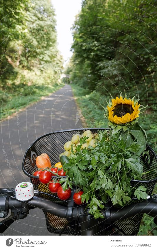 Modern and healthy transport of vegetables, fruit and sunflowers in a bike basket bicycle basket Vegetable Cycle path Sunflower Bicycle Cycling purchasing