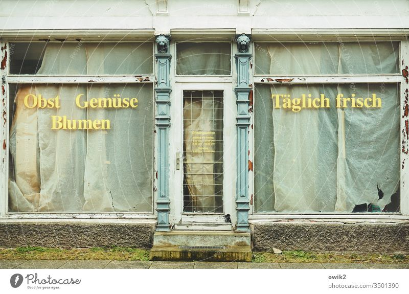 Supply and demand business Store premises Storefront Door Shop window Eastern Germany writing lettering fruit Vegetable flowers fresh every day publicity