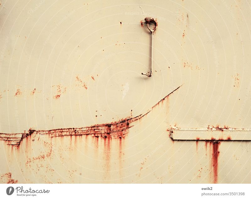 Parable Goal Tin Rust Old Tracks Transience Scratch mark dilapidated Ravages of time Checkmark Hinge Gap by surface Colour russet Beige Metal Destruction