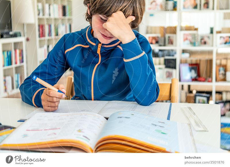homeschooling | challenge Effort concentrated Concentrate pens Homeschooling home office Education Calculation Write Reading work at home study at home