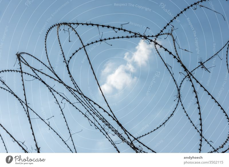 Barbed wire fence in the middle of a white cloud prison security sharp metal barbed border iron protection steel isolated danger barrier boundary line black
