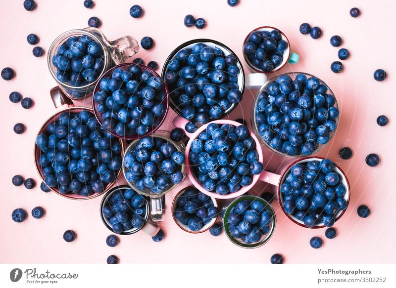 Fresh blueberries in cups top view. above view abundance agriculture berry blue fruits blueberry bowl colorful delicious diet dieting farmers market food fresh