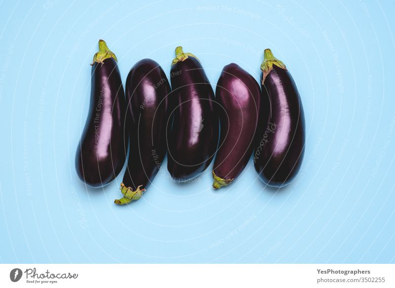Fresh eggplants arranged in a row on a blue background 5 above view agricultural agriculture aligned aubergine bio diet farmers market five food
